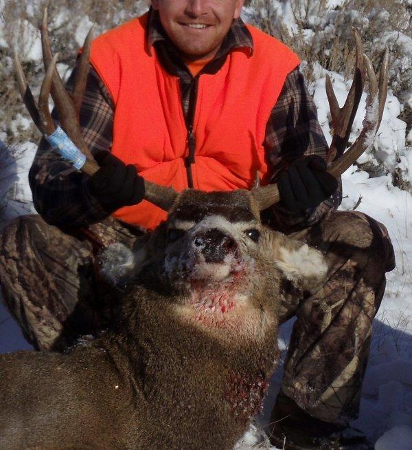 11/211 or 3/301 deer ?? - MonsterMuleys com