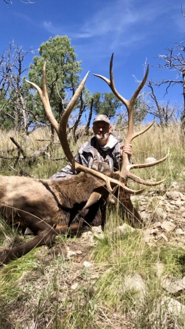 muzzleloader elk load - MonsterMuleys com