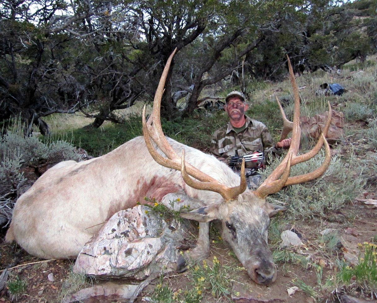 1-Nevada Elk 006.jpg