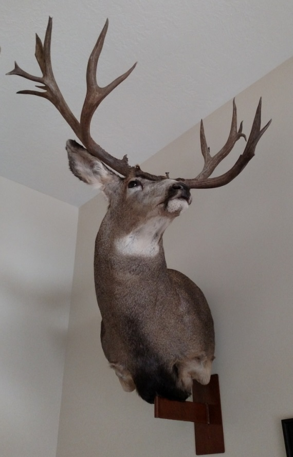 2015 buck mount3.jpg