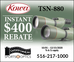 300x250-kowa-400.jpg