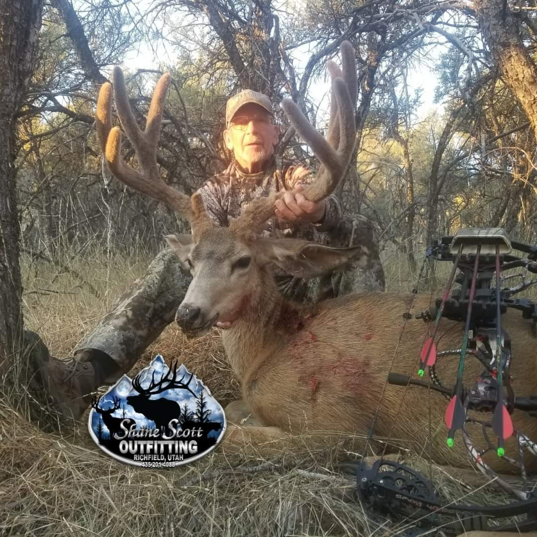 Big Velvet Muley.jpg