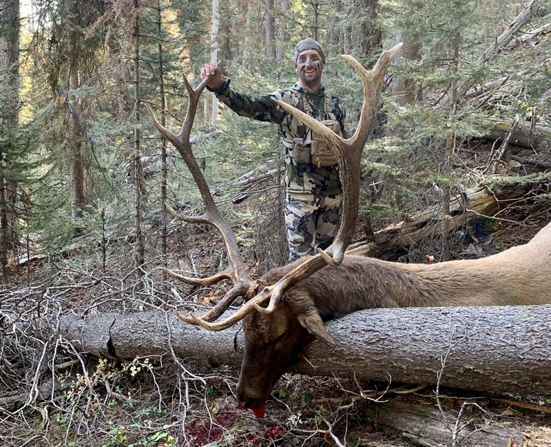 Colorado Unit 61 Archery Bull with Allout Guiding.jpg