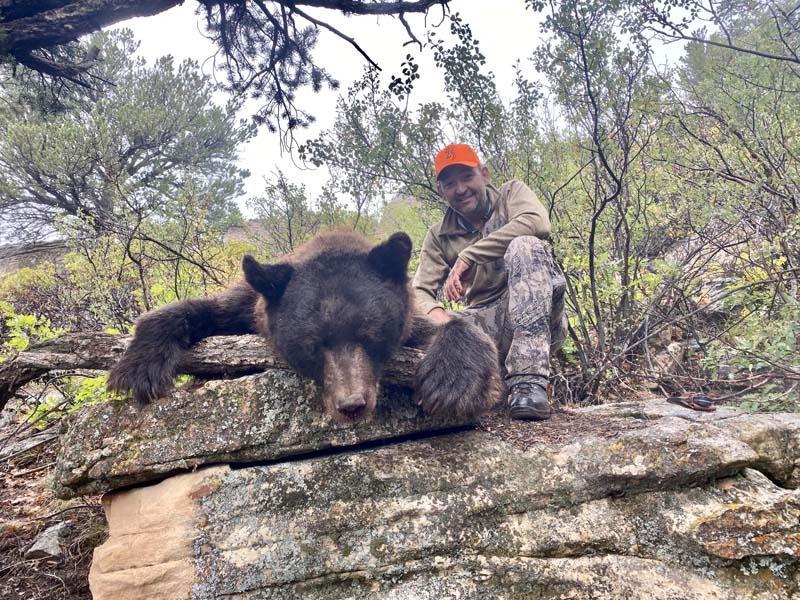 Colorado Unit 61 Bear with Allout Guiding.jpg