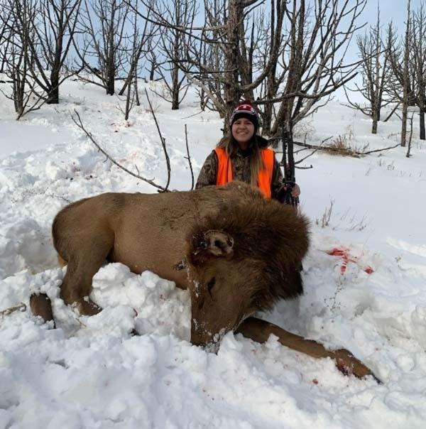 Cow Elk Success.jpg