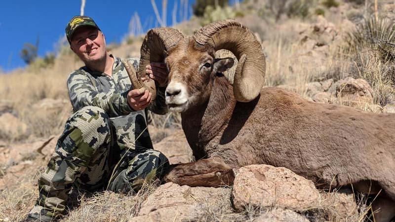 Desert-Meadow-Outfitters-Trophy-Bighorn.jpg