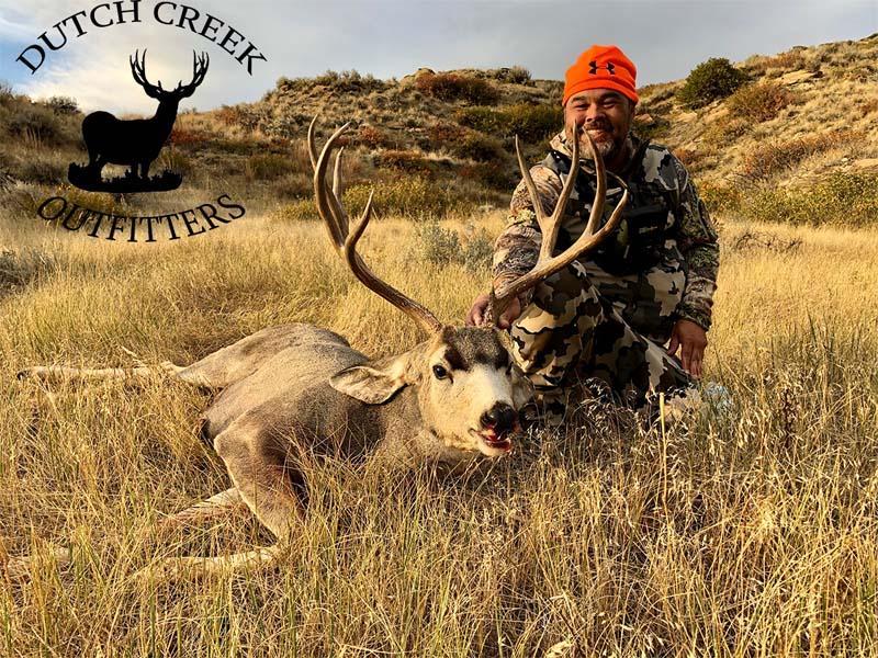 Dutch Creek Mule Deer 1.jpg
