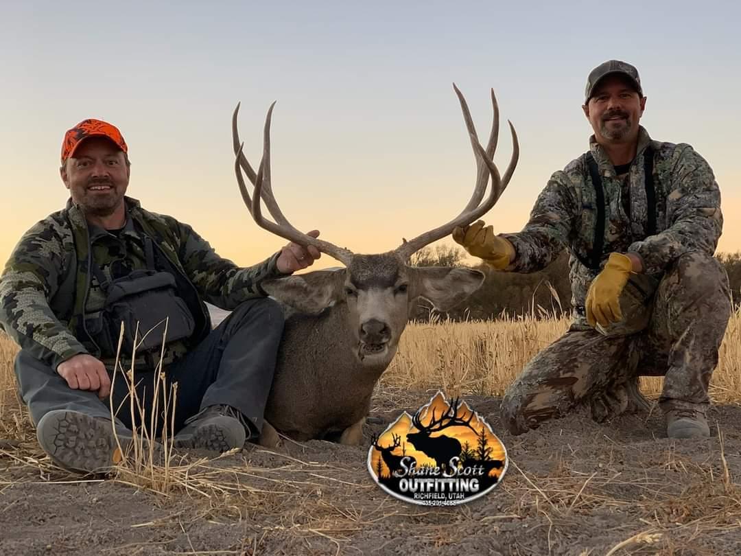 Fine Mule Deer.jpg