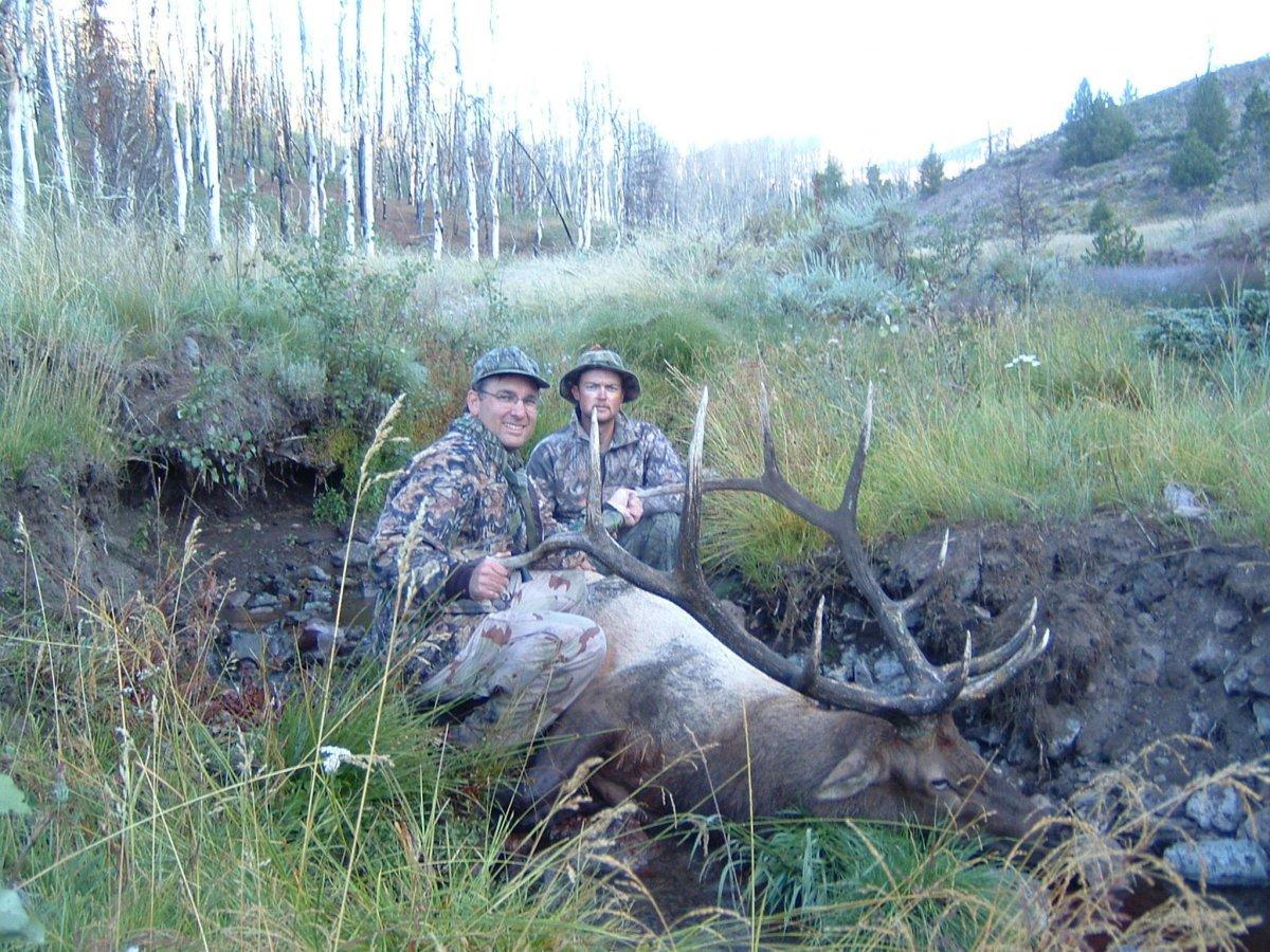 Rob's Elk05m.JPG
