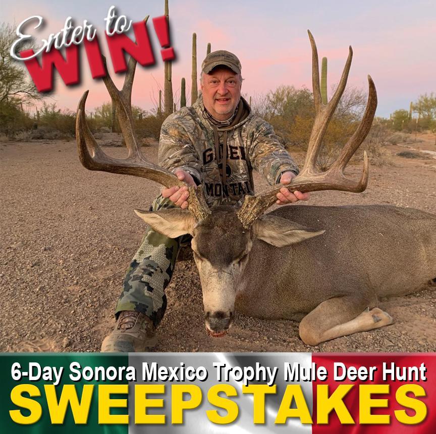 Square-Ad-Mule-Deer-Hunt3-1.jpg
