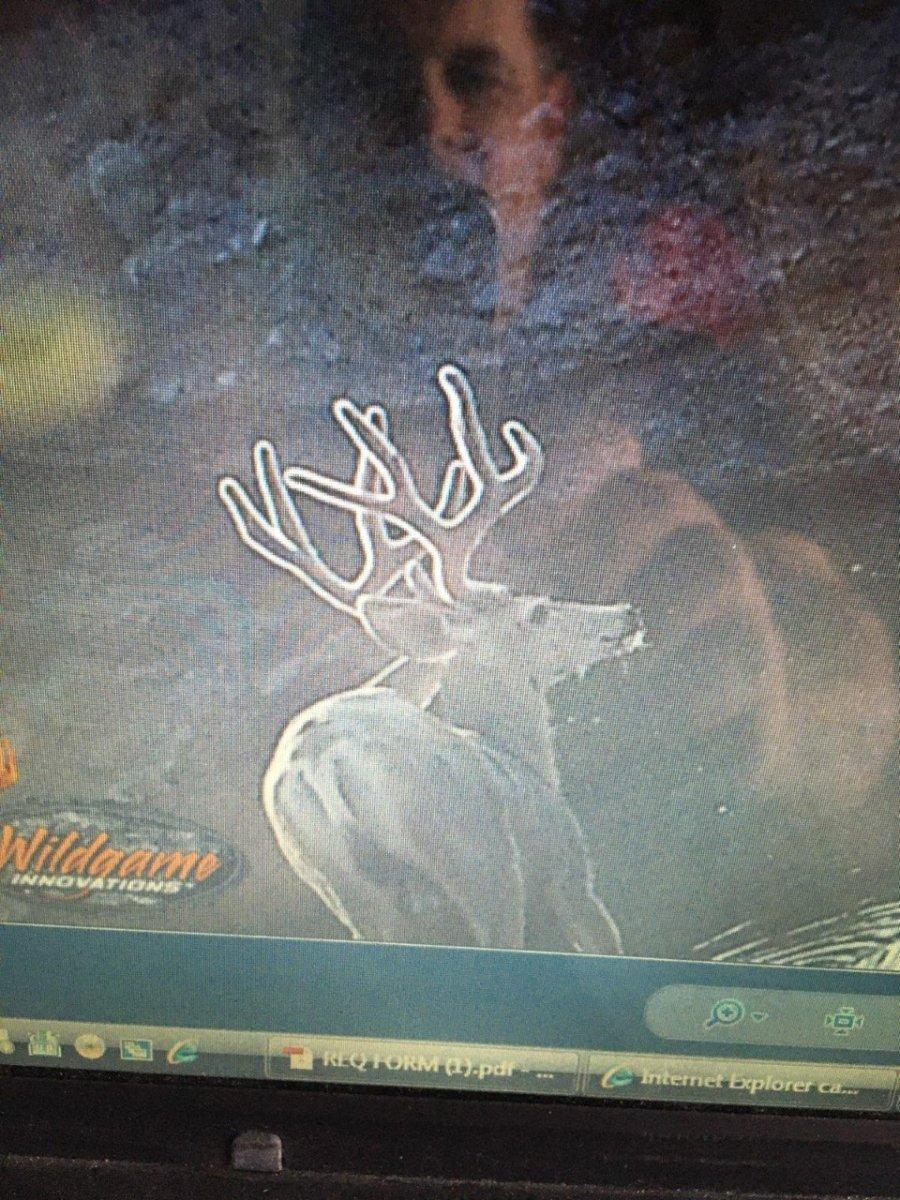 thumbnail_IMG_0993.jpg