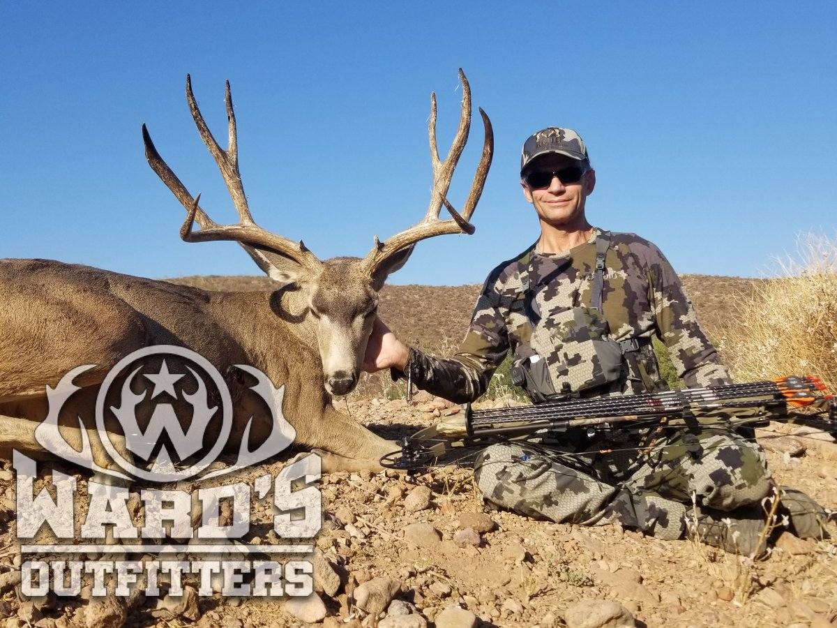 Wards Outfitters Big Buck 3.jpg