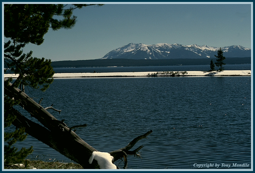 YellowstoneLk.jpg