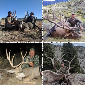 Timberline Outfitters Nevada