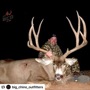 Tall Trophy Muley