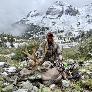 High Country Archery Buck