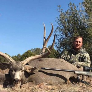 Heavy Wide Muley.jpg