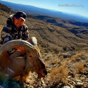 West Texas Aoudad Hunts 1.jpg