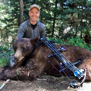 Great Looking Utah Archery Bear