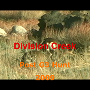 Division Buck and Doe.mp4