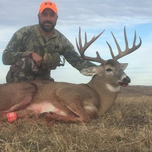 Big Whitetail Trophy