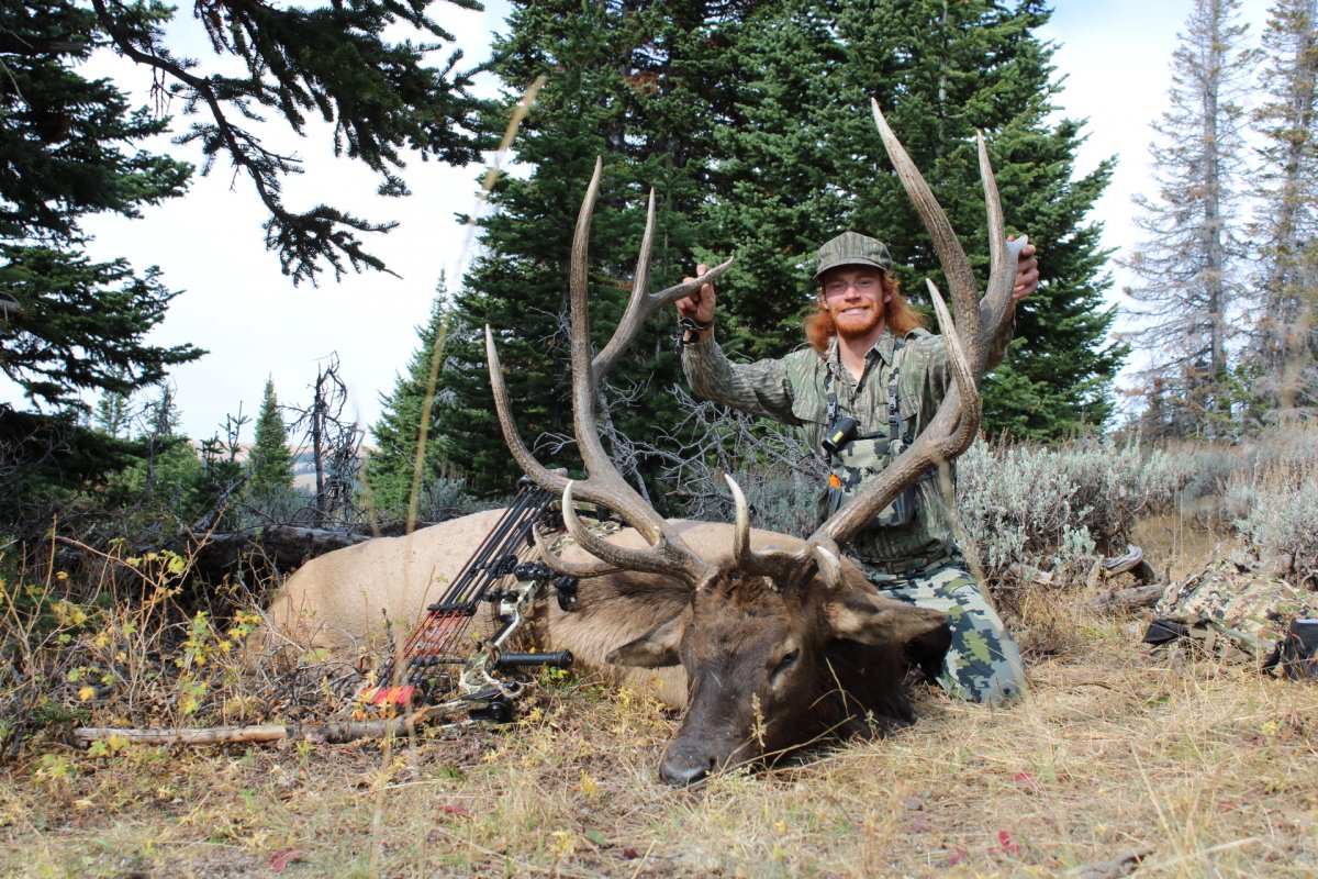 Wyoming Archery Success